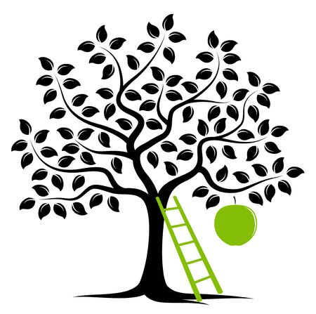 fruit tree: apple tree with one big apple and ladder isolated on white background
