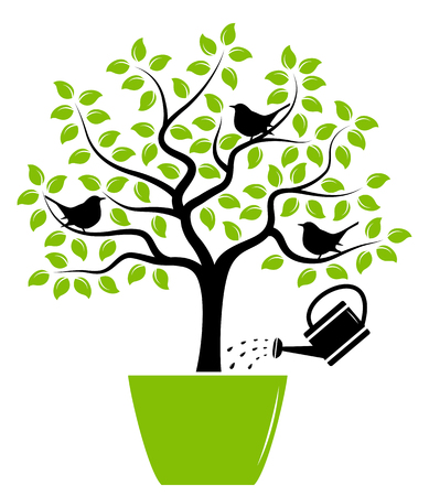 watering pot: vector tree with birds in pot and watering can isolated on white background Illustration