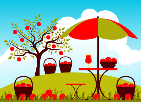 apple orchard: baskets of apples and table with umbrella in apple orchard