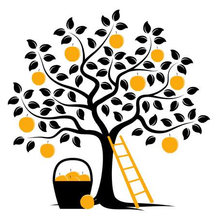 Vektor-Apfelbaum, Leiter und Korb von Äpfeln isoliert auf weißem Hintergrund Standard-Bild - 57953202