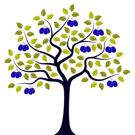 vector plum tree isolated on white background
