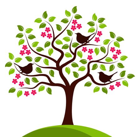tree isolated: flowering tree with birds isolated on white background