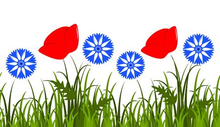 seamless border with corn poppy and cornflowers in grass isolated on white background Illustration