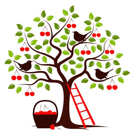 vector kersenboom met vogels, ladder en mand van kersen op een witte achtergrond