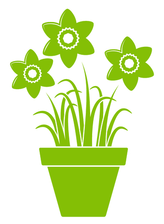 planter: vector daffodils in pot isolated on white background
