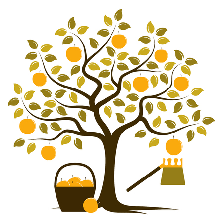 picker: vector apple tree with basket of apples and fruit picker isolated on white background