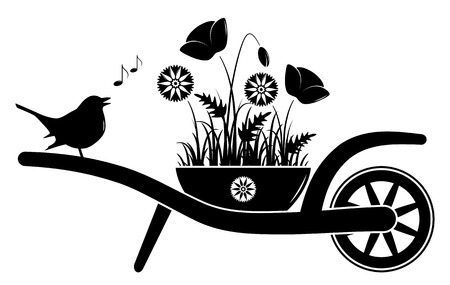 corn poppy: vector wheel barrow with corn poppies and cornflowers in pot and singing bird isolated on white background