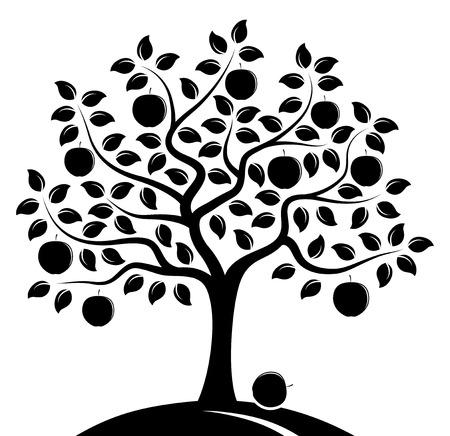 macieira de vetor isolada no fundo branco Ilustración de vector