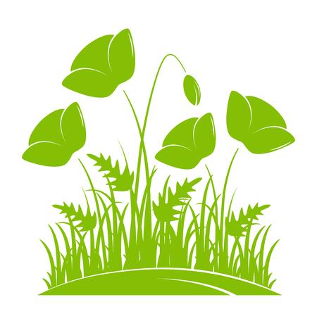 Vector il gruppo di papaveri di cereale in erba isolata su fondo bianco.