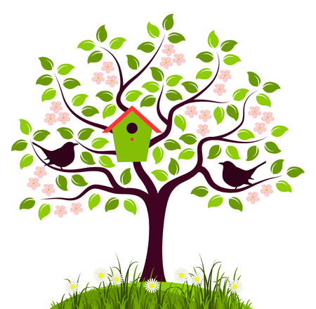 vector flowering tree with nesting bird box and couple of birds isolated on white background.
