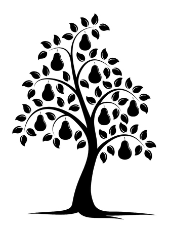 vector pear tree isolated on white background 일러스트