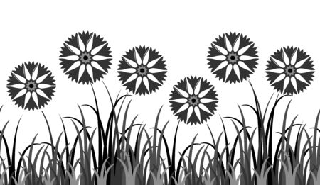 cultivate: vector seamless border with cornflowers in grass isolated on white background Illustration