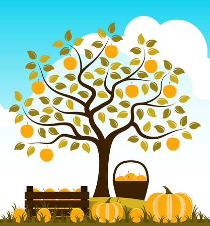 vector wooden crate of apples and pumpkins in autumn garden