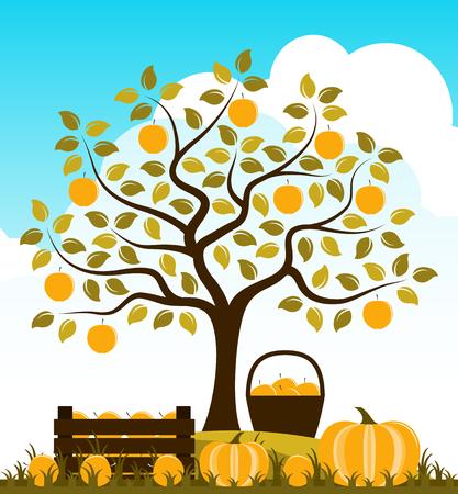 wood crate: vector wooden crate of apples and pumpkins in autumn garden