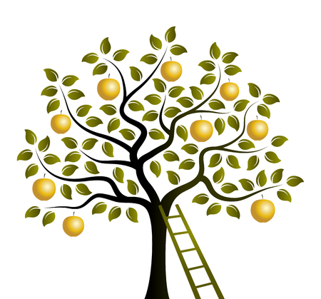 vector apple tree with golden apples and ladder isolated on white background Illustration