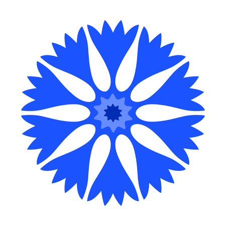 vector cornflower isolated on white background
