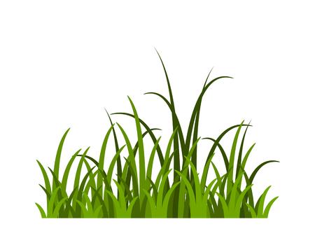 vecteur, herbe, isolé, blanc, fond