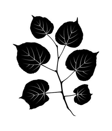 vector lindetakje geïsoleerd op een witte achtergrond