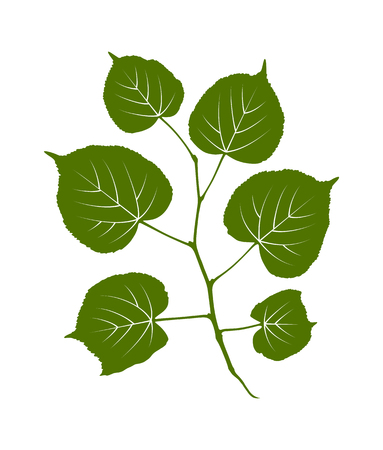 vector linden twig isolated on white background Stock Illustratie