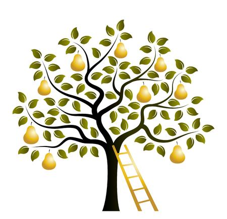 Vektorbirnenbaum mit goldenen Birnen und Leiter isoliert auf weißem Hintergrund Vektorgrafik