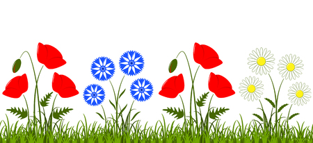 Vektor nahtlose Grenze mit Gänseblümchen, Klatschmohn und Kornblumen im Gras isoliert auf weißem Hintergrund