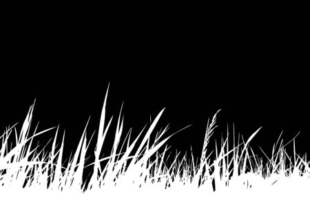 vector grass isolated on black background