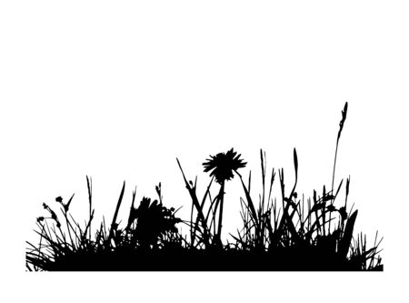 vector grass with meadow flowers isolated on white background 일러스트