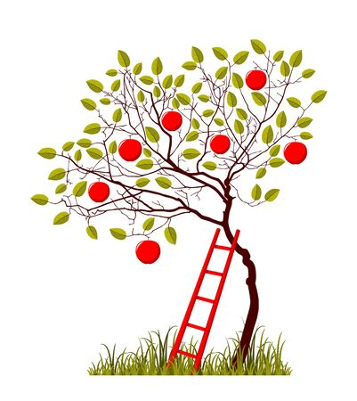 vector apple tree and ladder isolated on white background 일러스트