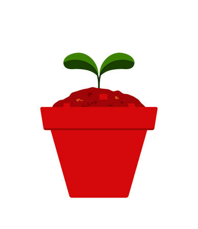 vector plant in pot isolated on white background 일러스트