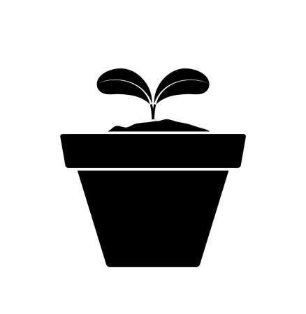 vector plant in pot isolated on white background Ilustração