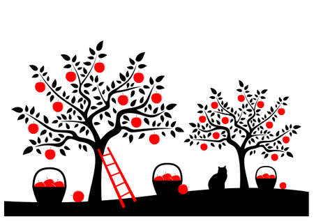 vector baskets of apples and ladder in apple tree orchard isolated on white background