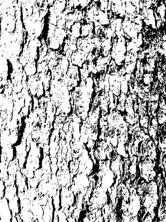 vector black and white texture of spruce tree bark