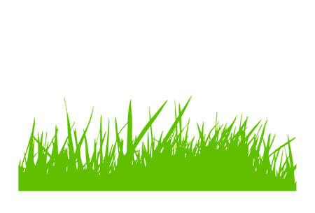 vector grass silhouette isolated on white background