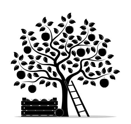 vector apple tree, wooden crate of apples and ladder isolated on white background Ilustração