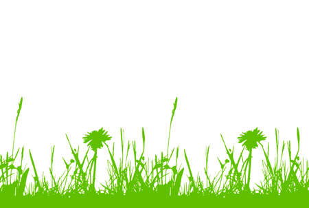vector seamless border with grass and meadow flowers isolated on white background