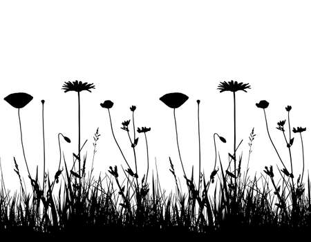 vector seamless border with oxeye daisy, corn poppy and meadow vetchling in grass isolated on white background Ilustração