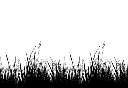 vector seamless grass border isolated on white background