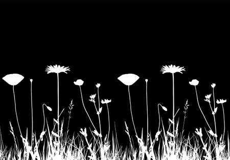 vector seamless border with oxeye daisy, corn poppy and meadow vetchling in grass isolated on black background