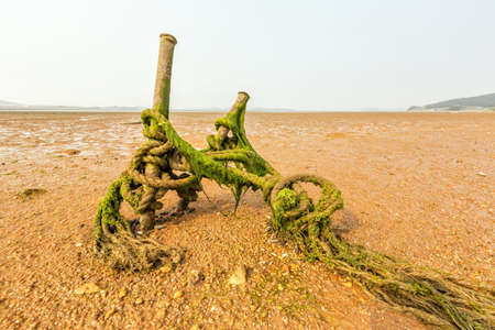 low tide and anchor