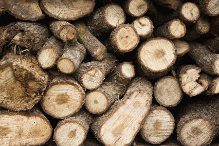 Pile of logs for firewood, close-up.