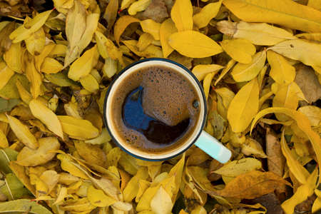 Coffee cup on autumn leaves.