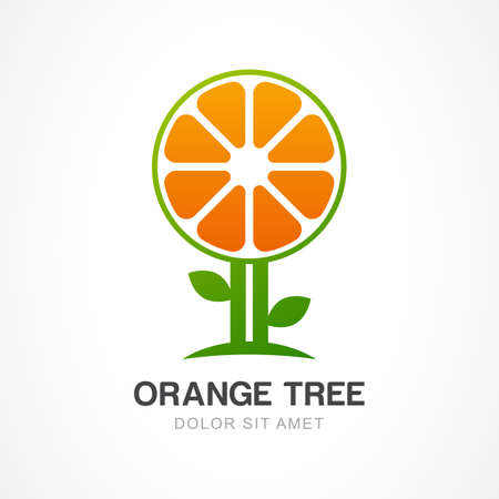 ayurveda: Vector  design template. Orange tree illustration. Garden, organic or ecology icon.