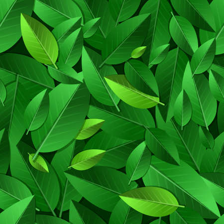 organic background: Vector seamless summer pattern with green leaves. Nature ecology organic background.