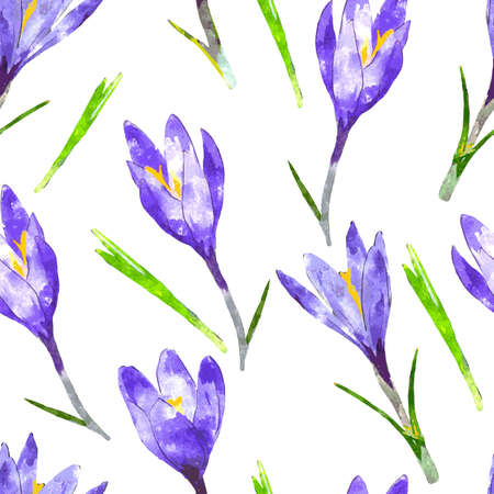 crocus: Watercolor seamless pattern with purple crocus flower and green leaves. Floral background. Vector illustration. Illustration