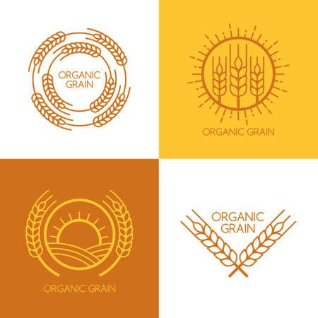 produits c�r�aliers: Ensemble de vecteur lin�aire bl�, champs logo mod�le de conception. Concept abstrait pour les produits biologiques, la r�colte, les grains, boulangerie, alimentation saine. Illustration