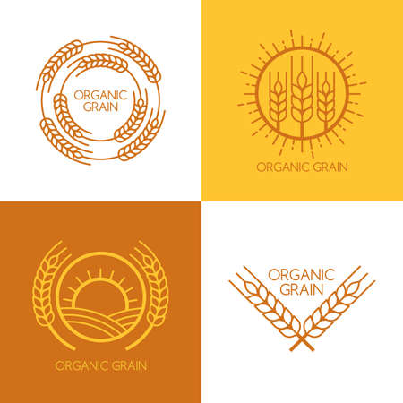 and organic: Set of vector linear wheat, fields logo design template. Abstract concept for organic products, harvest, grain, bakery, healthy food.