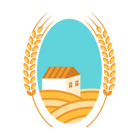grain fields: Golden wheat fields, ears, house and blue sky. Autumn landscape background. Flat logo design. Concept for organic products, harvest, grain, flour, bakery, healthy food. Illustration