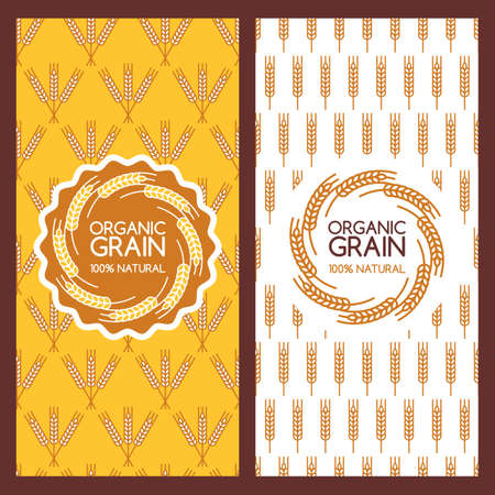 grow food: Set of vector backgrounds for banner, label, package template. Golden wheat ears seamless pattern and   design. Concept for organic products, harvest, grain, flour, bakery, healthy food.