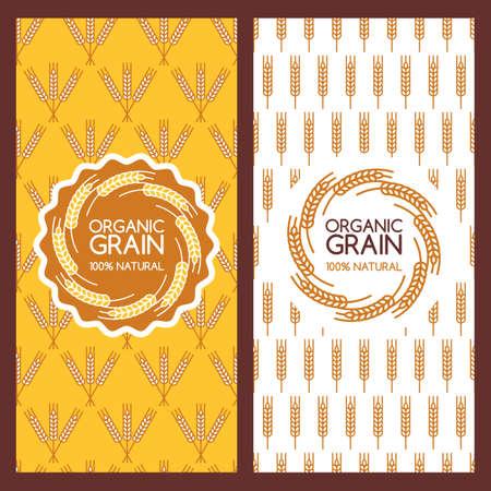 Conjunto de fondos de vector para la bandera, etiqueta, plantilla de paquete. oídos de oro del trigo patrón y el diseño sin fisuras. Concepto de productos orgánicos, cosecha, grano, harina, panadería, alimentos saludables.