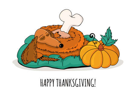 roasted turkey: Happy Thanksgiving greeting card.  doodle sleeping dachshund dog with roasted turkey leg and pumpkin, isolated on white background.